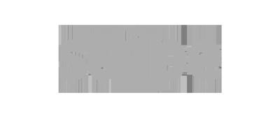 partner stripe fade logo